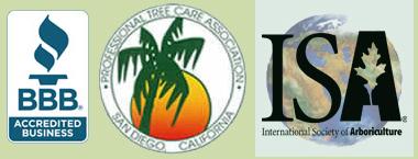 affiliations-wp